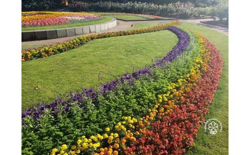 20 植物園