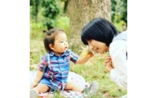 京都ならではの「はぐくみ文化」を活かした子ども・若者等への支援