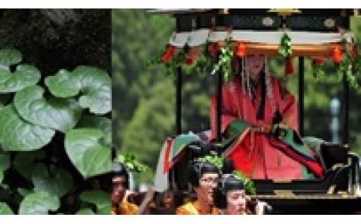~京都議定書誕生の地から始める~環境と調和した持続可能な社会の実現