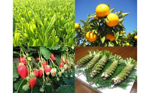お茶・わさびなどの農産物消費拡大