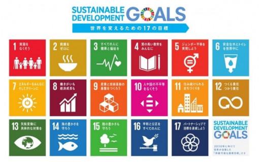 (6)スポーツ・文化の振興、多様な人材の活躍、SDGsの推進