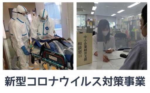 (11)新型コロナウイルス対策事業
