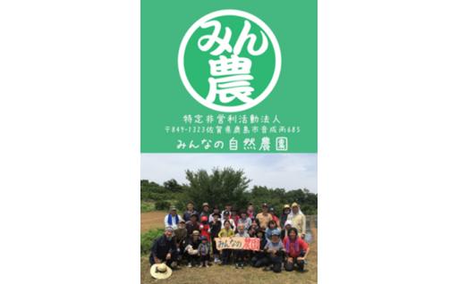 99)特定非営利活動法人みんなの自然農園